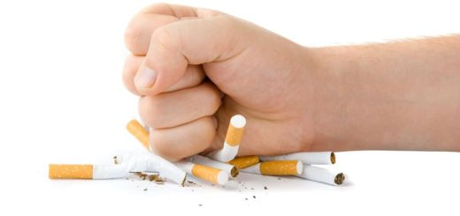 Male fist with many cigarettes isolated on white